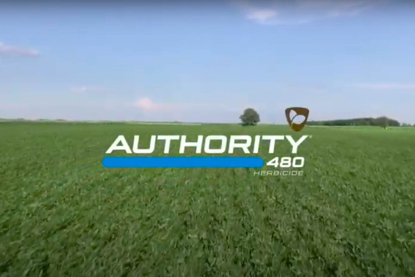authority 480