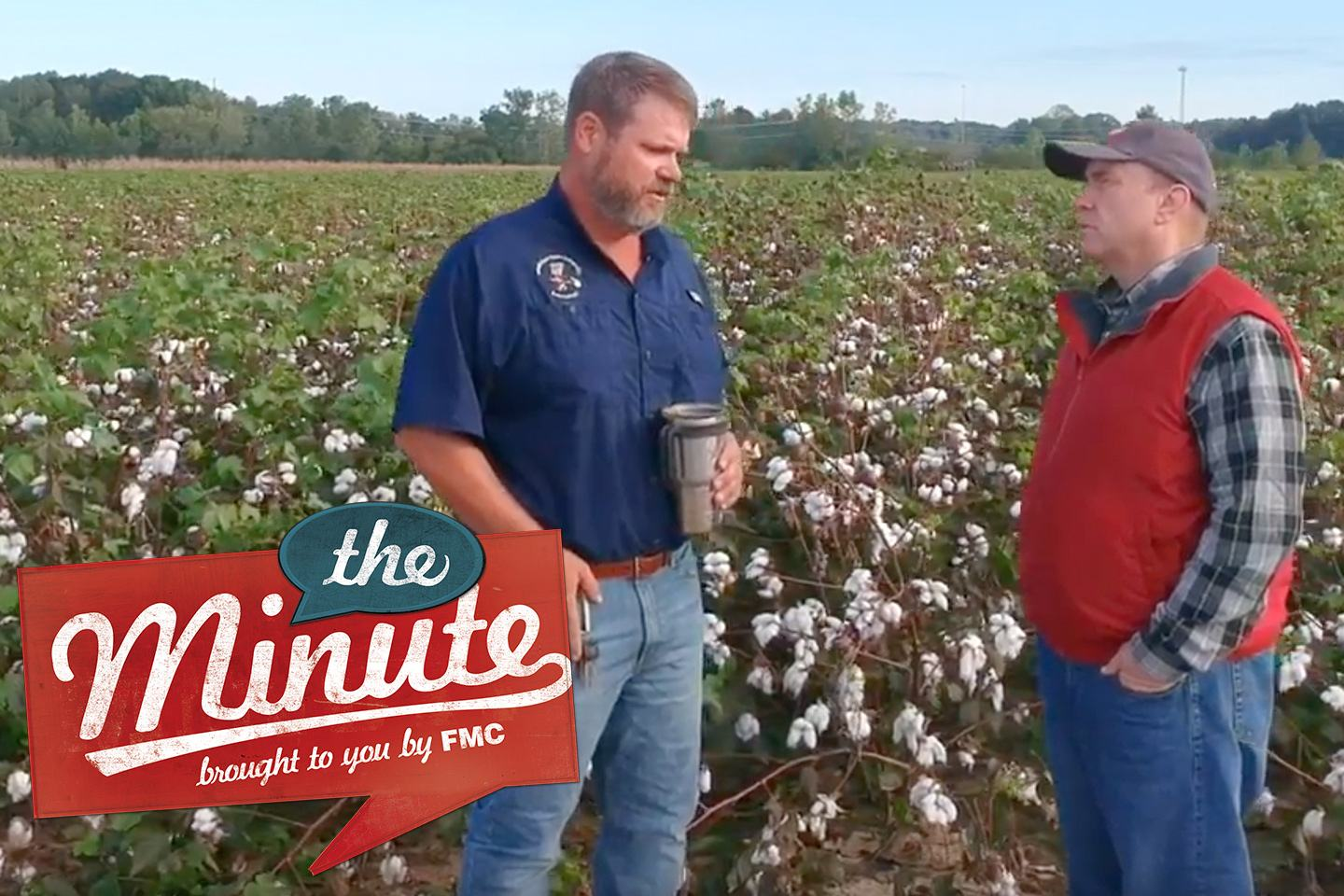 Two people interviewing in cotton field
