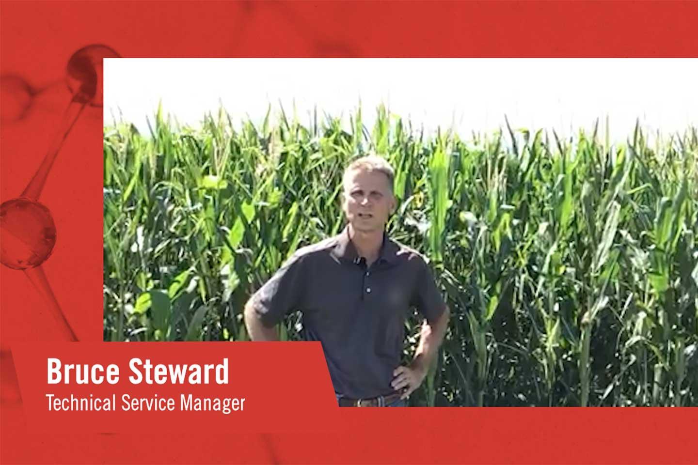 FMC Tech Talk Corn Rootworm Control Insecticide