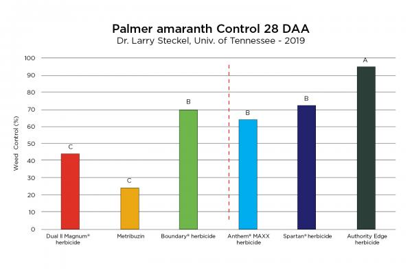 Palmer Amaranth Control with Authority Edge Herbicide