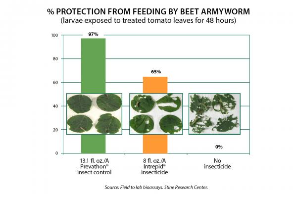 Prevathon Insect Control Armyworm Protection