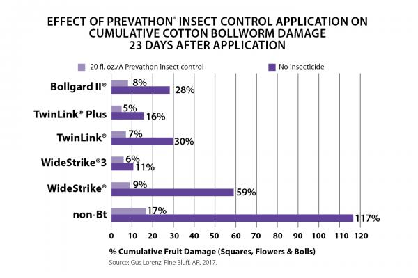 Prevathon Insect Control Cotton Bollworm Damage